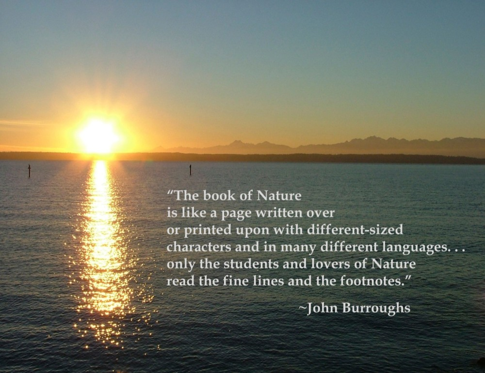 The Natural Textbook