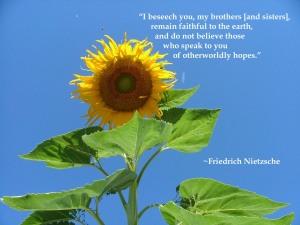 Nietzsche-faithful