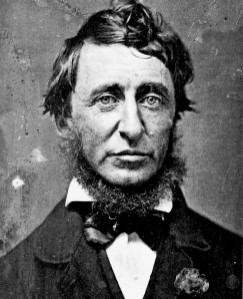 Thoreau-henry-david-thoreau