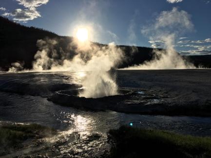 Evening geysers, Yellowstone