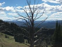 Pass to Lamar Valley, Yellowstone