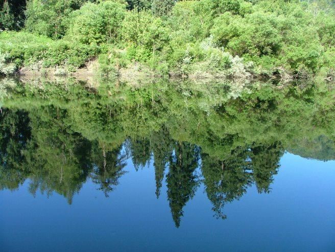 Russian River 05 029