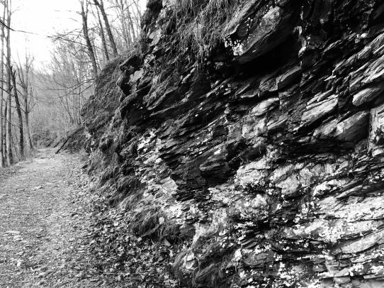 Big Creek Ancient Rocks 1