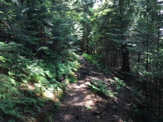 "Balsam trail to ""highest point"""