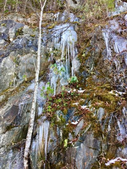 Icefall4 (Highland)