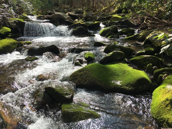 Green and the Mountain Stream (Highland)