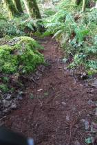 A Highland Pathfinder path